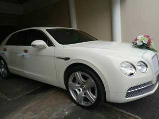 RENTAL MOBIL BENTLEY